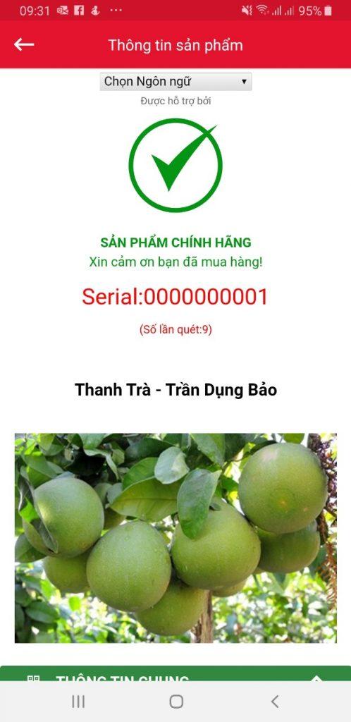 Thanh Trà Huế